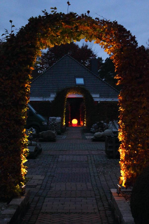 Lichtgarten Haske Bild 3
