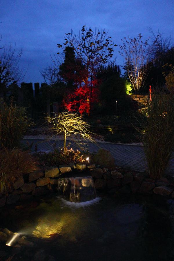 Lichtgarten Haske Bild 5