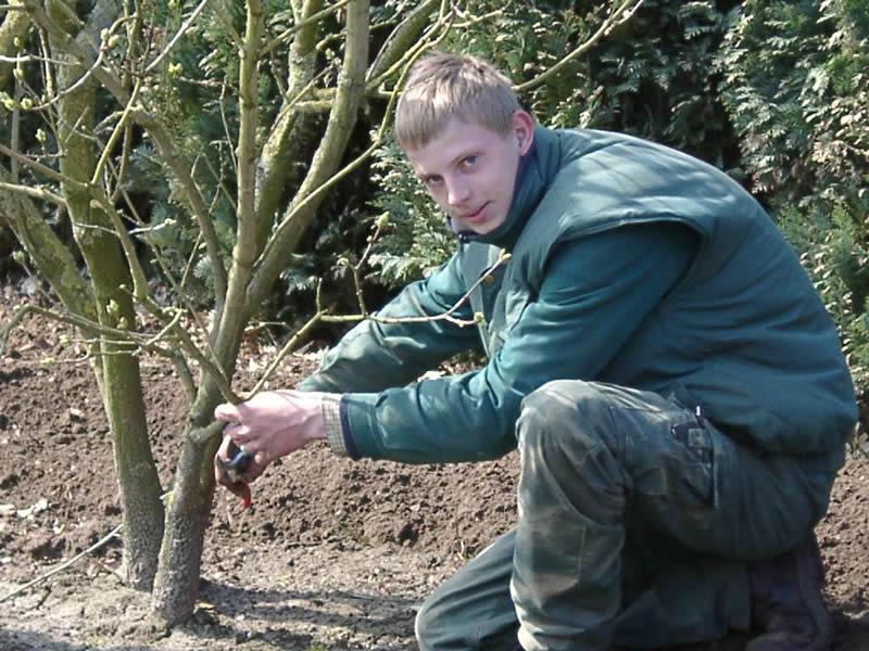 Dauergartenpflege Haske Bild 1
