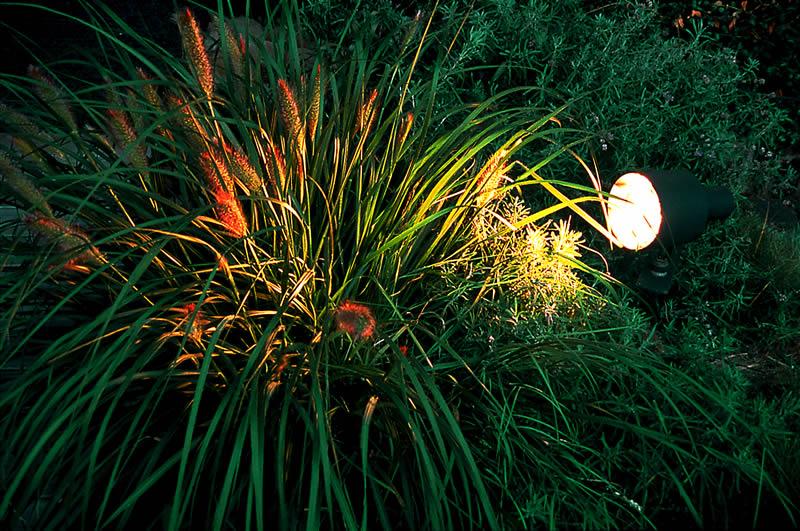 Lichtgarten Haske Bild 14