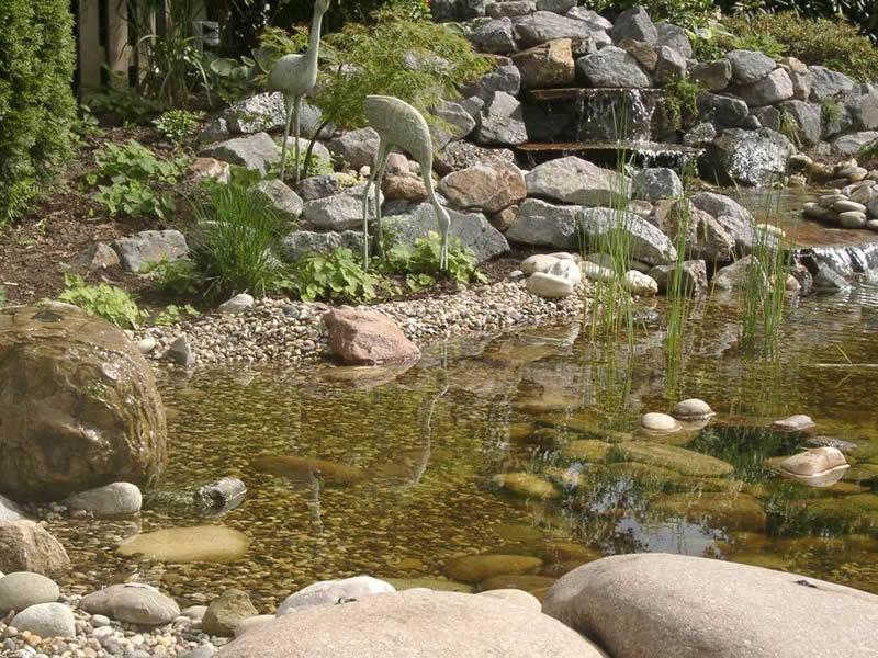 Faszination Wasser Bild 7