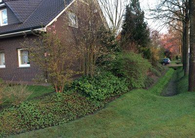 Der Garten Peters - vorher