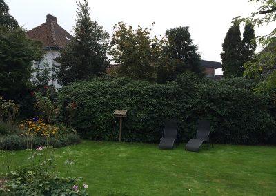 Der Garten Bahlmann - vorher