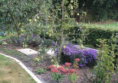 Der Garten Meyer - nachher