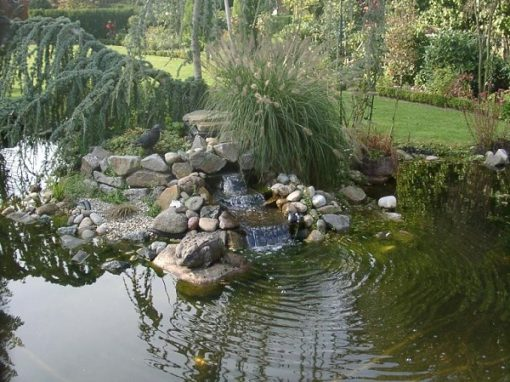 Der Garten Wichmann, Löningen