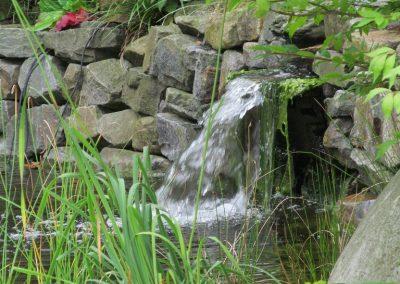 Der Garten Moors - nachher