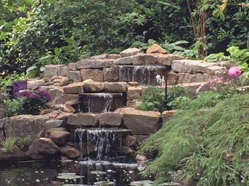 Der Garten Hielscher, Lohne