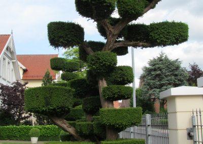 Der Garten Wessmann, Cloppenburg