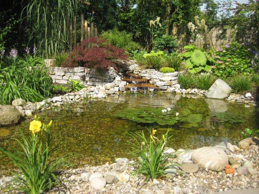 Der Garten Dwertmann, Cloppenburg