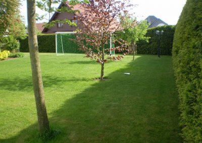 Der Garten Förster- vorher