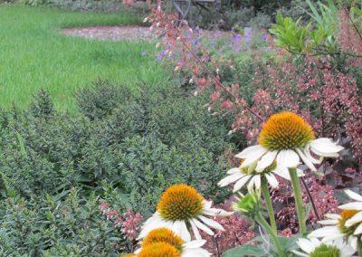 Der Garten Wilke - nachher