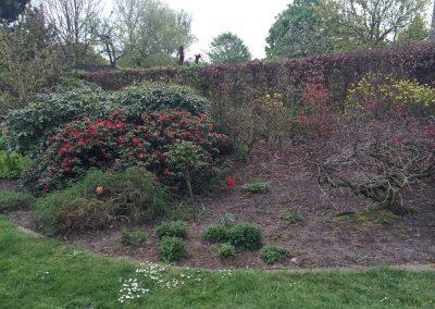 Der Garten Stabrey - vorher