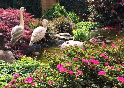 Der Garten von Angelika W. aus Cloppenburg