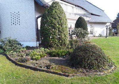 Der Garten Skubinn - vorher