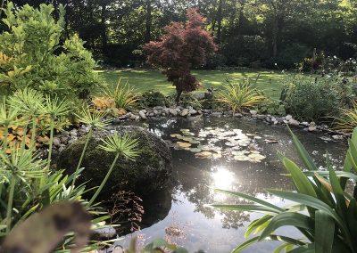 Ein Garten in Vechta - nachher