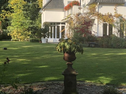 Ein Garten in Vechta