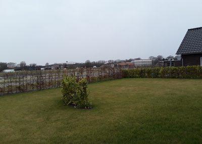 Der Garten Richter - vorher