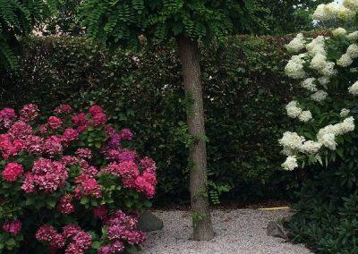 Der Garten Bahlmann nachher
