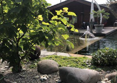 Garten nachher