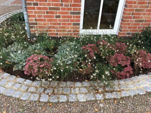 Der Garten Griesoph aus Lastup